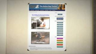 Online Dog Trainer Training Manual