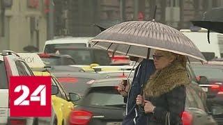 Смотреть видео Штормовое предупреждение в столице: жителей призывают к осторожности - Россия 24 онлайн