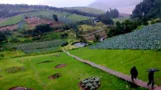 Destiny Farmhouse - Ooty