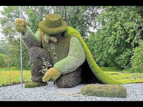 Прекрасные топиарии в вашем саду