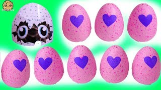 cookie swirl c videos