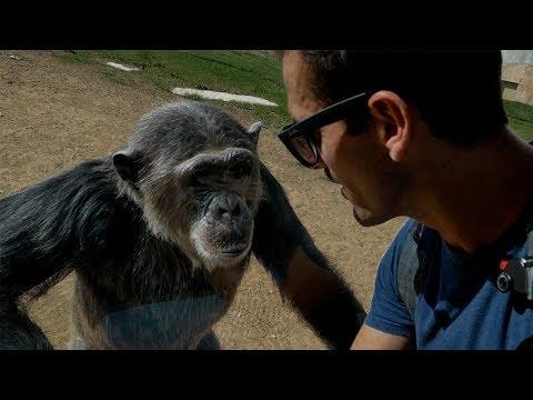Visiting Al Ain Zoo UAE