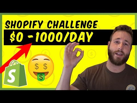 New Store From $0 to $1000/ Day | Shopify Dropshipping
