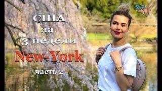 #2 Одна в США | НЬЮ-ЙОРК часть 2. СКОЛЬКО СТОИТ. Свадьба по-американски.
