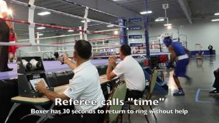 USAB Educational Video: Boxer Out of Ring