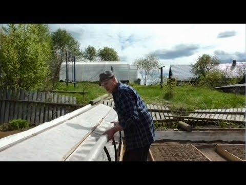 видео: Устанавливаем парник для томатов Как установить парник быстро надёжно и выгодно
