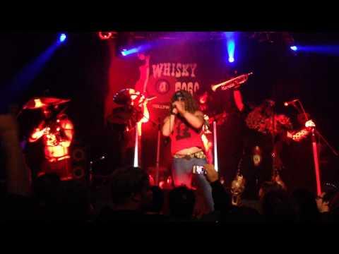 Metalachi - Metallica Mariachi Medley (Master of Puppets/Nothing Else Matters/Enter Sandman)
