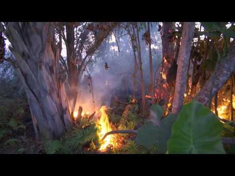 Borracharia pega fogo ao lado de posto de combustíveis em Caxias