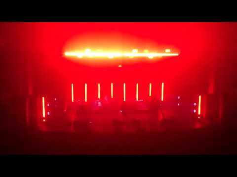 INTERPOL IF YOU REALLY LOVE NOTHING
