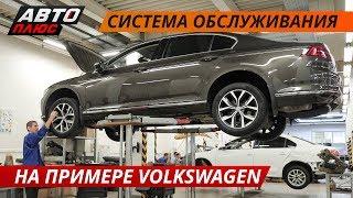 Как устроена система обслуживания коммерческих автомобилей Volkswagen? Часть 1 | Своими глазами