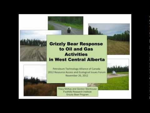 Grizzly Response to Oil & Gas Activities in West Central Alberta