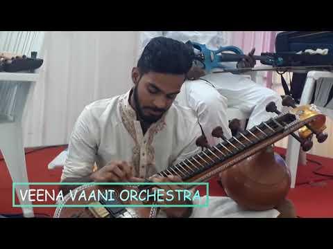 Ennavale adi ennavale Song | Veena Cover | by Veena Vaani Orchestra