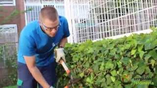 Jardineros En Acción. Grupo Serpasat