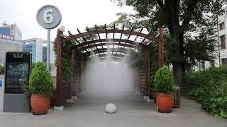 [안개핀조경]광주 국립아시아문화전당 장미터널 쿨링포그 …