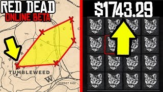 IF YOU FOLLOW THIS PATH YOU WILL BE RICH in Red Dead Online! RDR2 Online Money Making! Red Dead 2