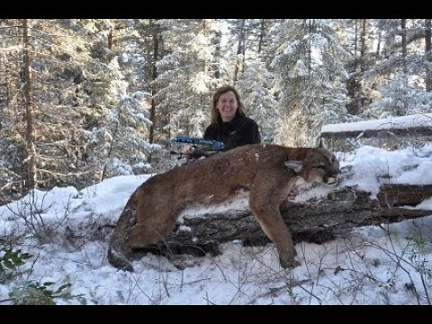 Outdoor Quest TV, Cougar Hunting In British Columbia