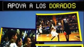 Dorados de Chihuahua Basketball - Este viernes 3 de febrero