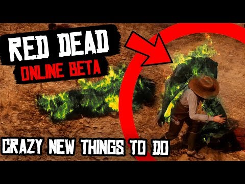 Red Dead 2 CRAZY NEW THINGS TO DO!