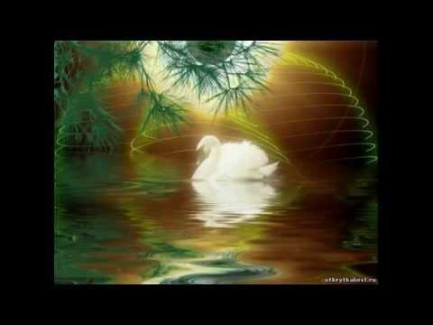 Олег Пахомов - Белые лебеди