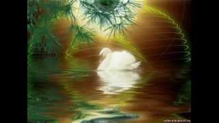 �������� ���� Олег Пахомов - Белые лебеди ������