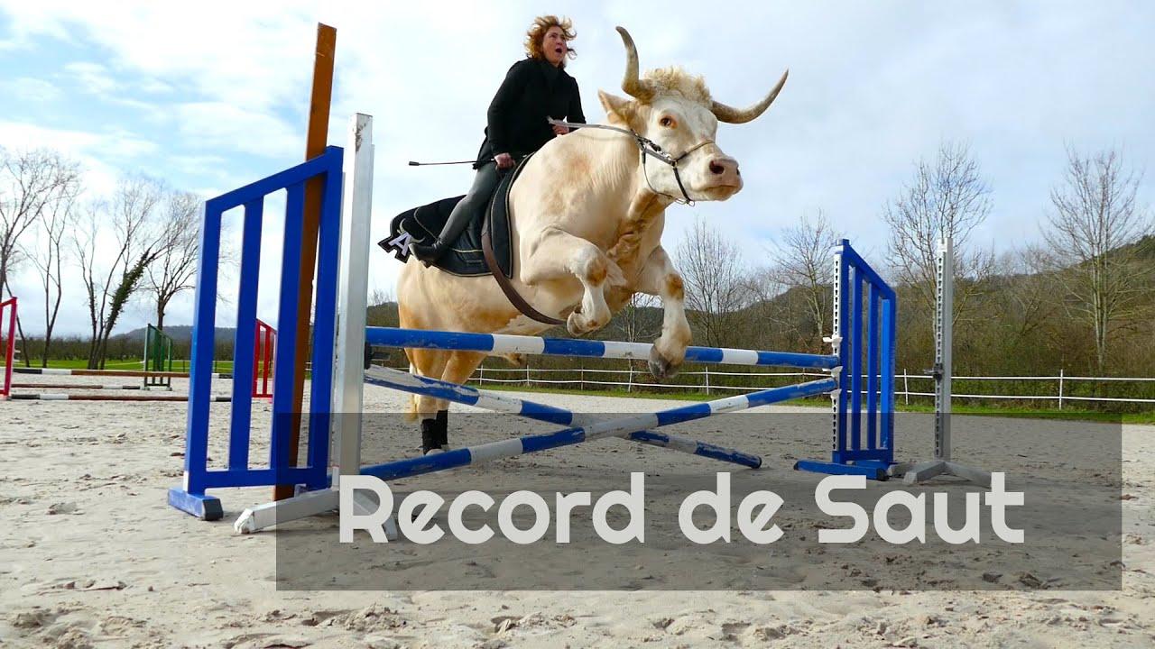 Download Jumping : La puissance d'Aston !