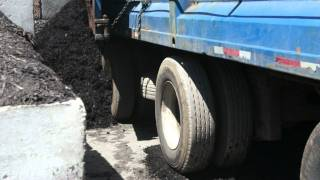 Walking floor truck unloading mulch