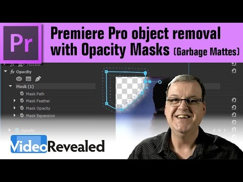 Premiere Pro object removal with Opacity Masks (Garbage Mattes)