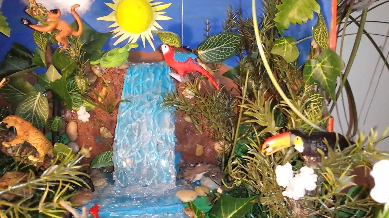 Crazy cool - diorama YouTube rainforest