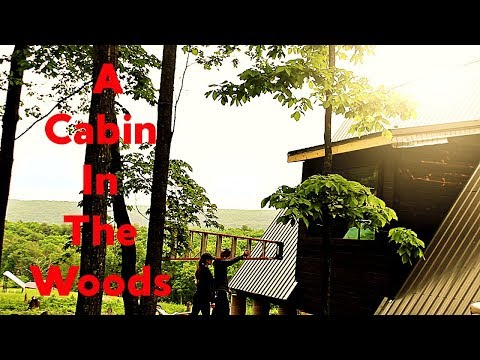#39-building-our-cabin-in-the-woods