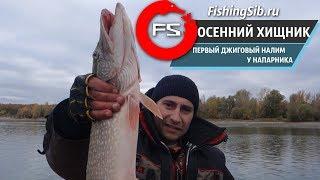 Рыбалка на щуку с лодки + первый осенний налим на джиг | FishingSib видео