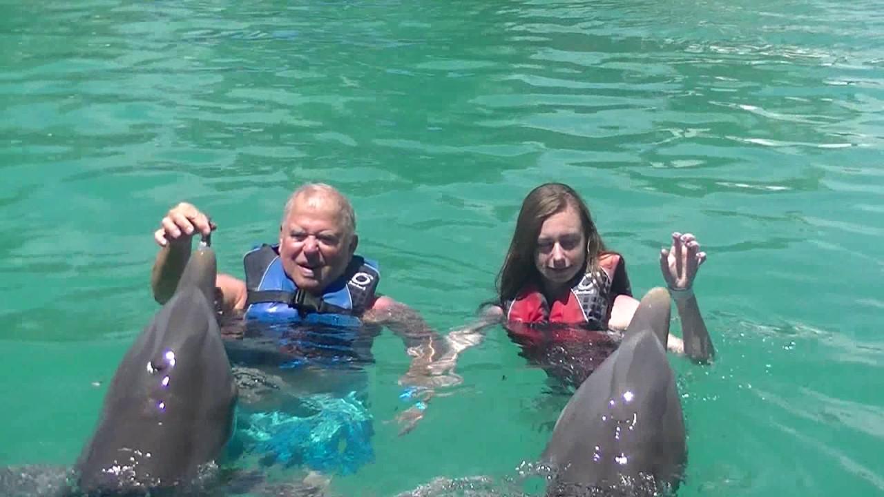 Dolphin Swim At Blue Lagoon Island Bahamas