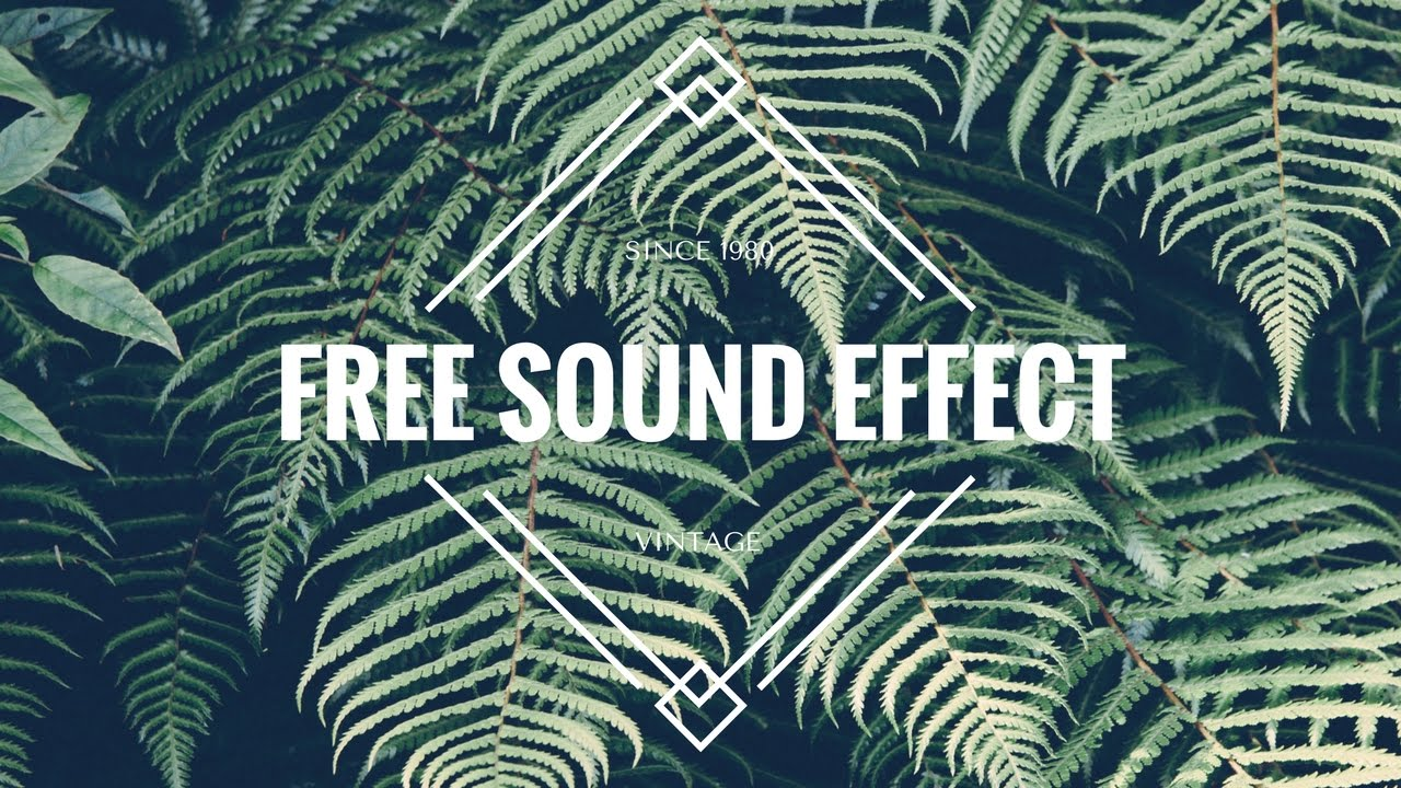 【Youtuber Tips #1】 50首合法下载音效 Free 50+ non copyright Sound Effect download