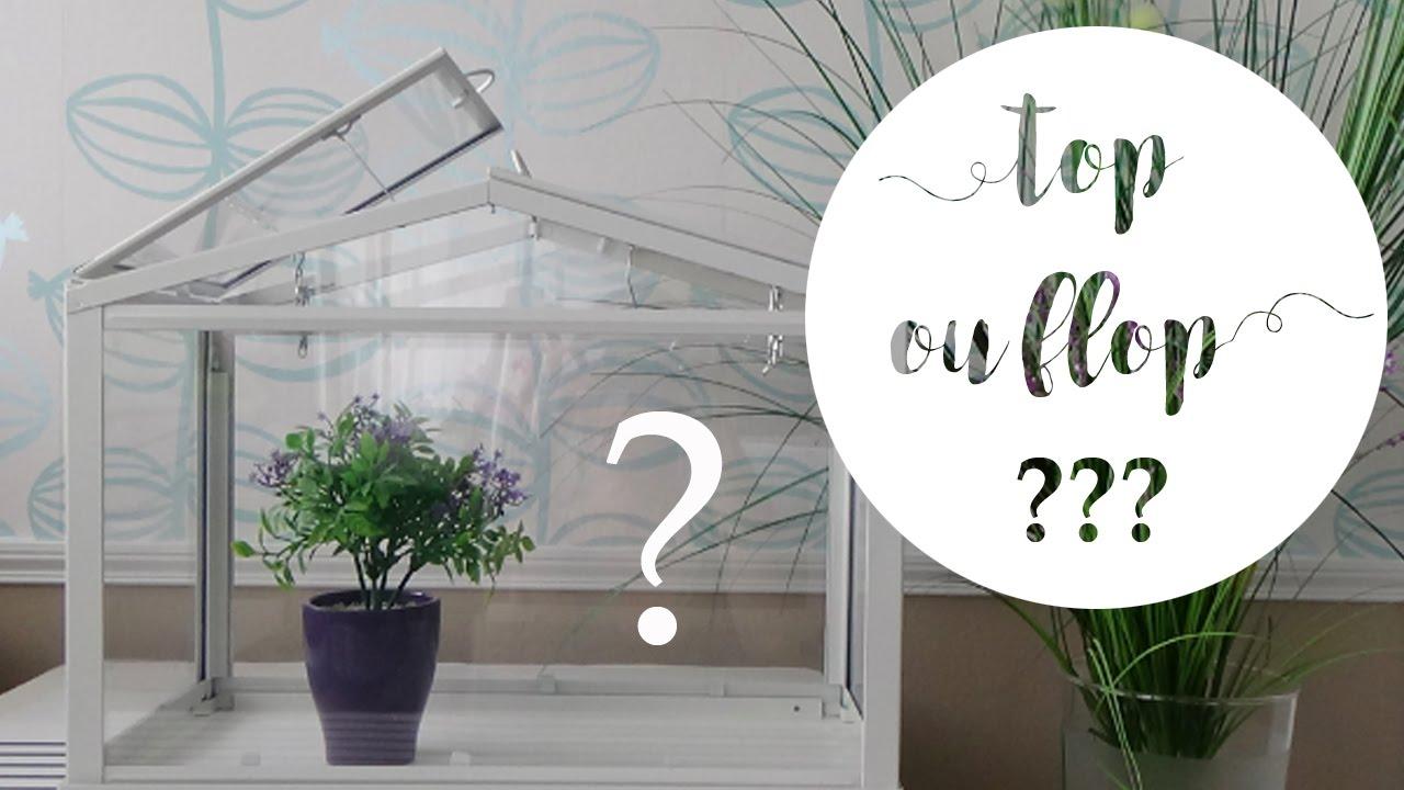 Jardinière À Suspendre Ikea top ou flop ? la mini serre socker d'ikea pour le jardinage