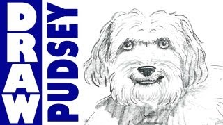 How to draw really cute dog, Pudsey!