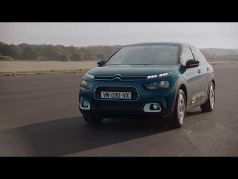 New C4 Cactus Hatch - An ultra-comfortable hatch with a unique personality