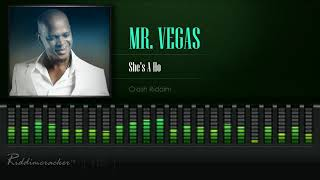 Mr. Vegas - She's A Ho (Crash Riddim) [HD]