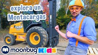 Blippi explora un Montacargas | Aprende con Blippi | @Blippi Español |Moonbug Kids Parque de Juegos