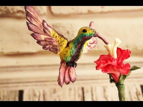 Вопрос: Правда, что колибри может менять цвет оперения, если да, то когда?
