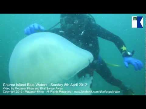 Scuba Diving At Churna Island - 8th Apr 2012