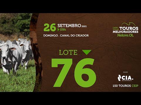 LOTE 76 - LEILÃO VIRTUAL DE TOUROS 2021 NELORE OL - CEIP