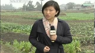 Farmers' incomes grow after reforms