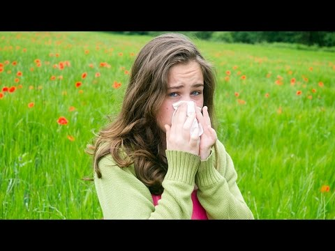 How To Get Allergies Under Control – Dr. David Samadi