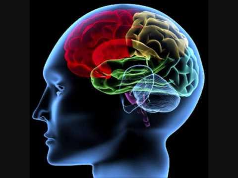 neuro transmitter