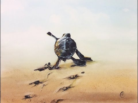 Watercolor Turtle on a Sand Painting Demonstration