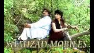 AMEER NAWAZ KHAN SONGS 2011 PARDASIA (MALIK SHAHZAD)