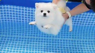 엄마, 나 지금 물속이에오?