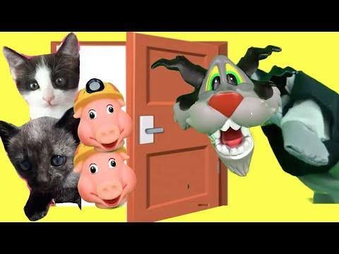 Mis gatitos bebés Luna y Estrella cuento infantil de los tres cerditos para niños / Funny Cats