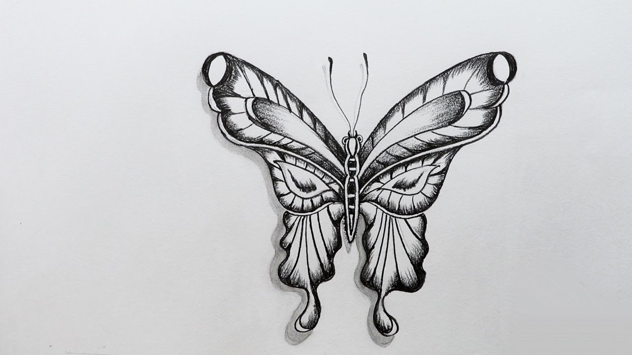 How To Sketch A Butterfly