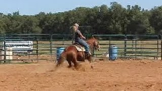 *Sold* Flashdrive Kitty - Reining & Ranch Pleasure