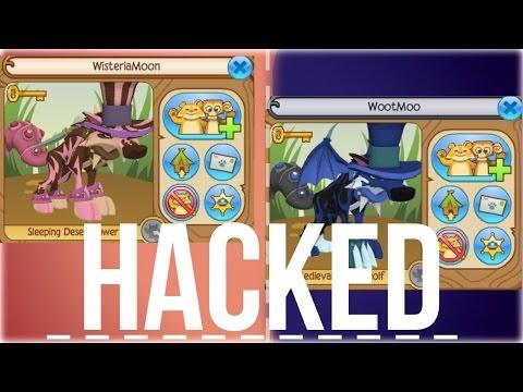 WisteriaMoon & WootMoo got hacked?